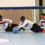 رییس هیئت ورزشهای نابینایان البرز:  ۲۰۰ ورزشکار نابینا در البرز فعالیت میکنند
