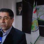 فرضی مدیر کل منابع طبیعی استان البرز  ۱۲ هزار هکتار بیابان زدایی داشته ایم