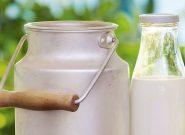 ستاد تنظیم بازار قیمت شیرخام را اعلام کرد