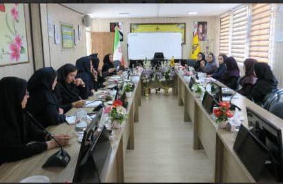 نخستین جلسه کمیته راهبردی و کارگروههای تخصصی بانوان شرکت گاز البرز