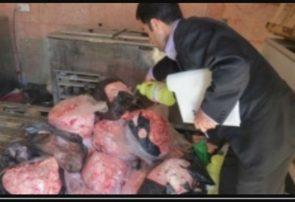 پلمب واحد عرضه گوشت چرخکرده غیرمجاز در فردیس