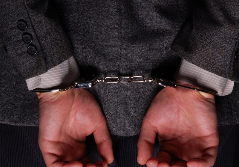 دستگیری سارق سابقه دار در منطقه شاهین ویلا