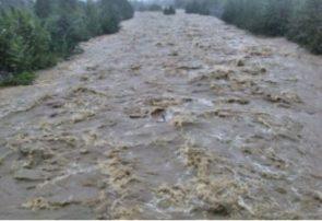 مردم وارد حریم رودخانه های البرز نشوند